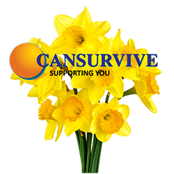 Daffodils Bunch with Cansurvive Logo- Clear Background 250x250