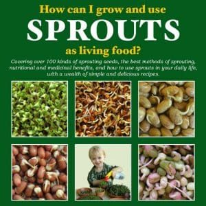 how-can-i-grow-and-use-sprouts-as-living-food Cover Exerpt